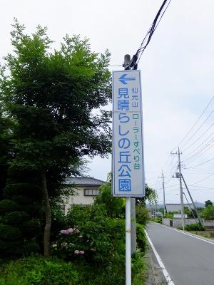 2010_06200015