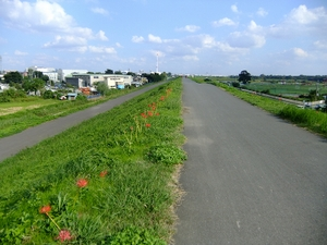2010_10020037_2