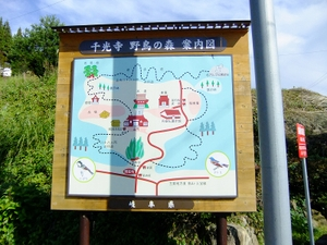 2010_10170037